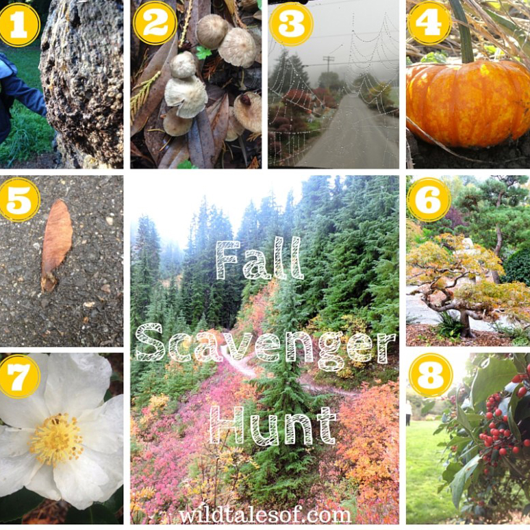 Fall Scavenger Hunt - Wild Tales of...